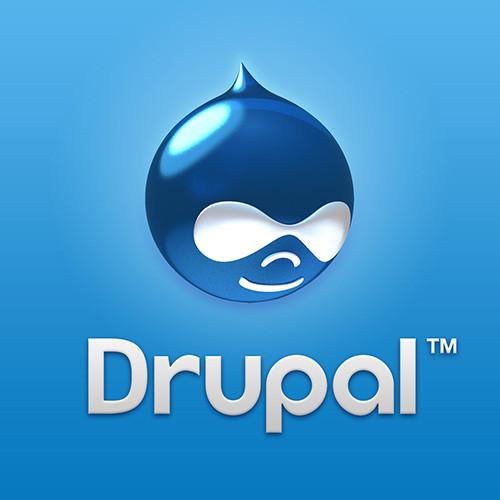 1369982819_drupalbranding2012.jpg