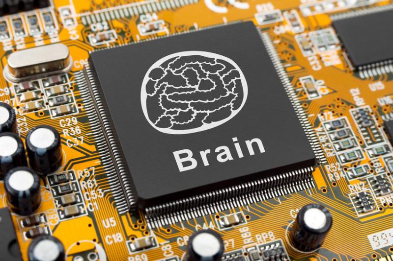 1374931247_brainchipwide.jpg