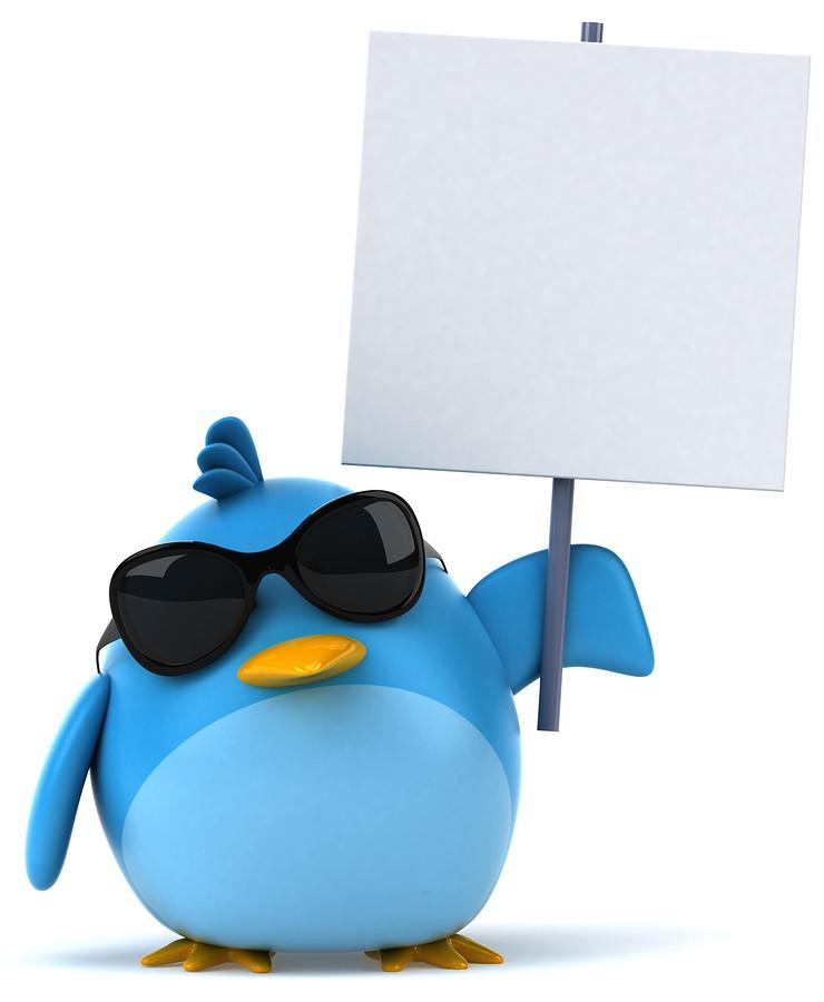 1377945445_2-key-ways-to-advertise-on-twitter.jpg