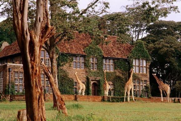 1380484831_giraffe-manor-kenya.jpg