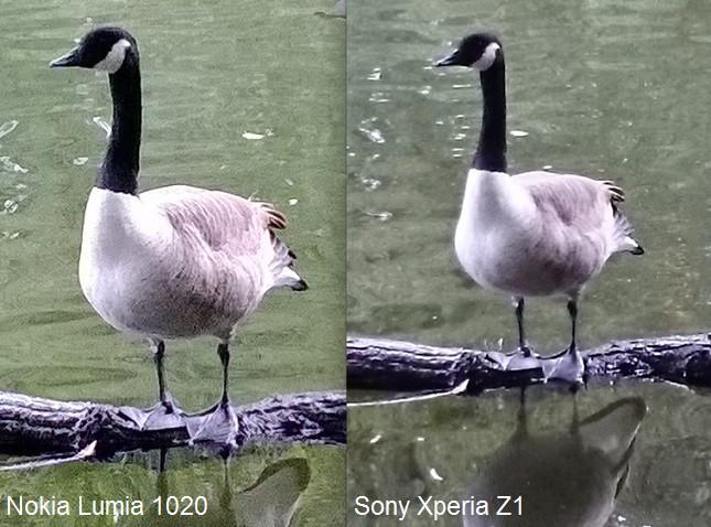 1380718614_z1-1020-compare.jpg