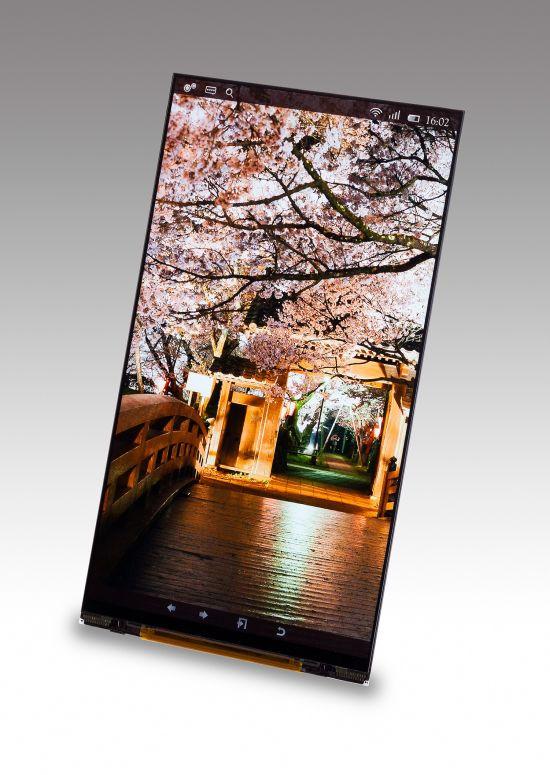 1382763529_japan-display.jpg
