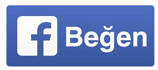 1386413564_facebook-begen-butonu-degisti-02.jpg