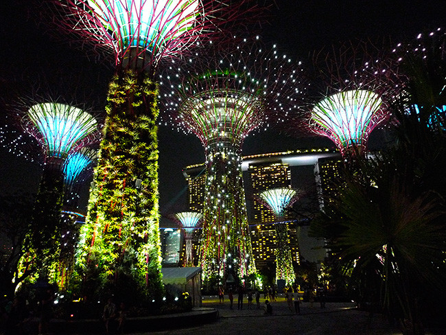 1389191424_patrick-bellew-gardens-by-the-bay-singapur-5.jpg