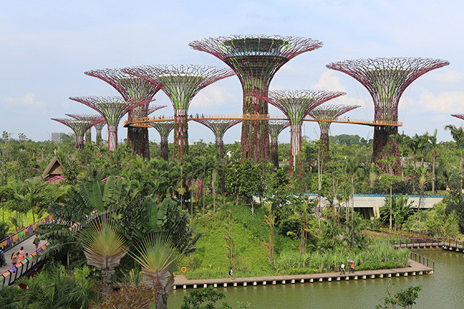1389191448_patrick-bellew-gardens-by-the-bay-singapur-4.jpg