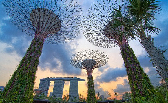 1389191522_patrick-bellew-gardens-by-the-bay-singapur-2.jpg