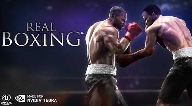 1390998527_real-boxing-tegra-3-app.jpg
