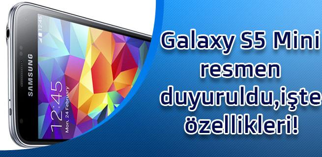 1404393629_1.jpg