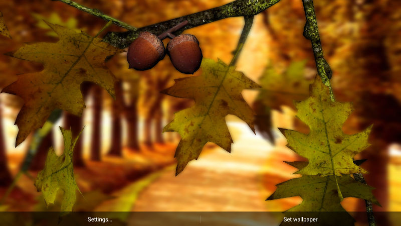 1413276569_autumn-leaves-hd-in-gyro-3d-parallax-1.jpg