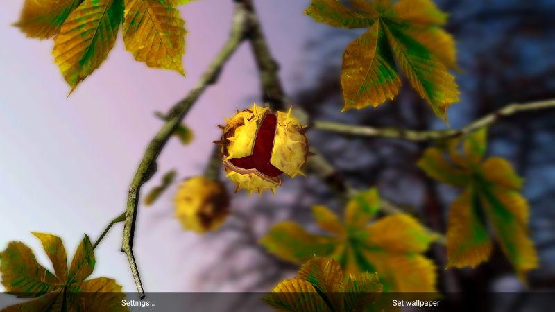 1413276576_autumn-leaves-hd-in-gyro-3d-parallax-2.jpg