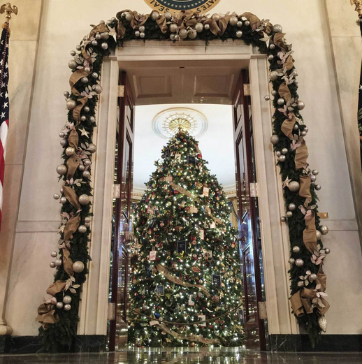 1417854919_pro-photographer-uses-rear-camera-on-the-apple-iphone-6-plus-to-catch-holiday-event-at-the-white-house-4.jpg