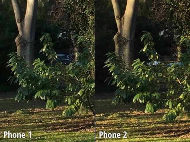 1419817923_close-up-view2.jpg
