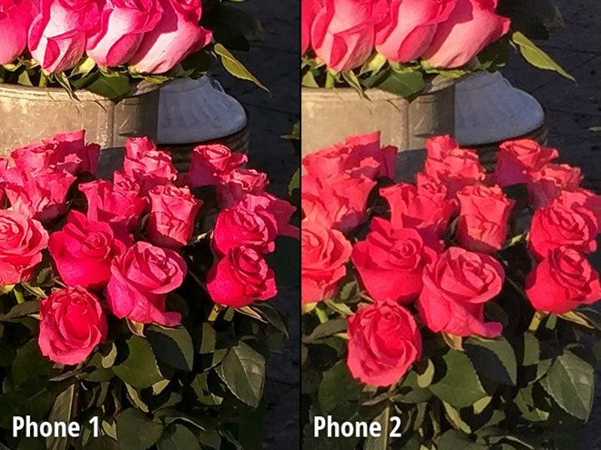 1419818148_close-up-view7.jpg