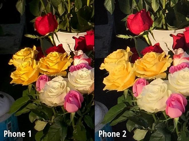 1419818184_close-up-view9.jpg