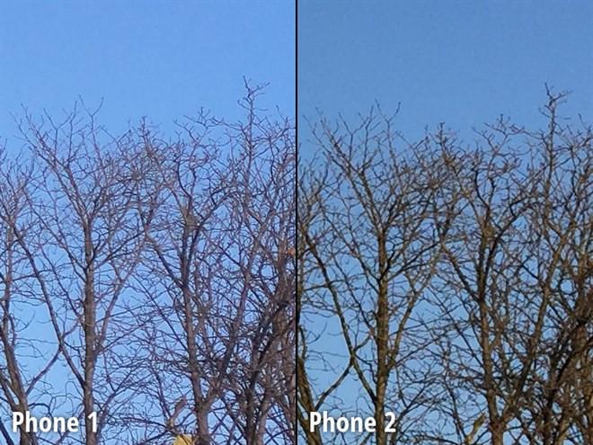 1419818370_close-up-view11.jpg