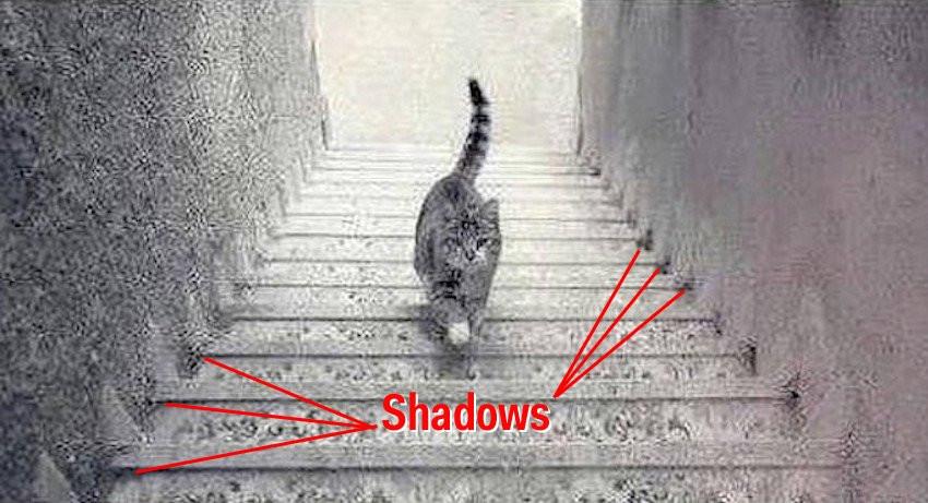 1428744926_shadows-11.jpg