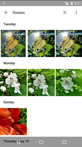 1432536589_screenshots-from-new-google-photos-app-8.jpg