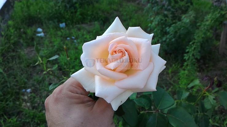 1436516457_p20150706190841.jpg