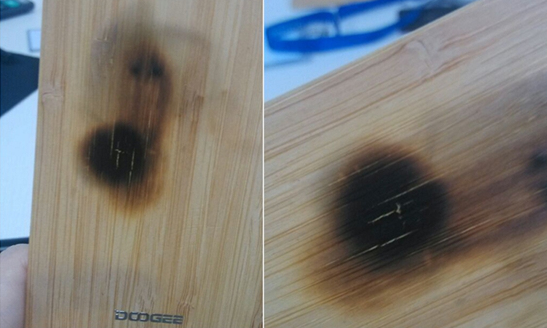 1439364919_bamboo-back-survives-the-fire....jpg