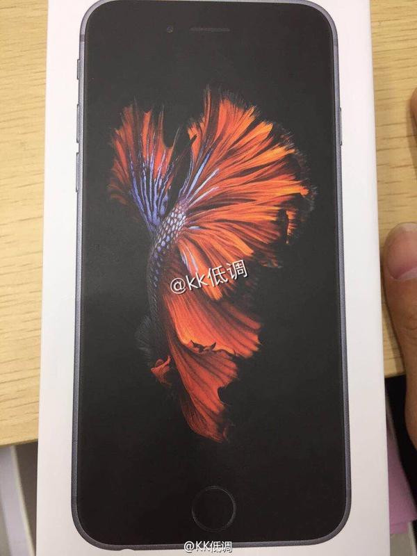 1441798798_alleged-iphone-6s-box.jpg