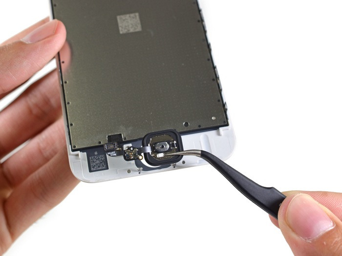 1443264992_apple-iphone-6s-teardown-15.jpg