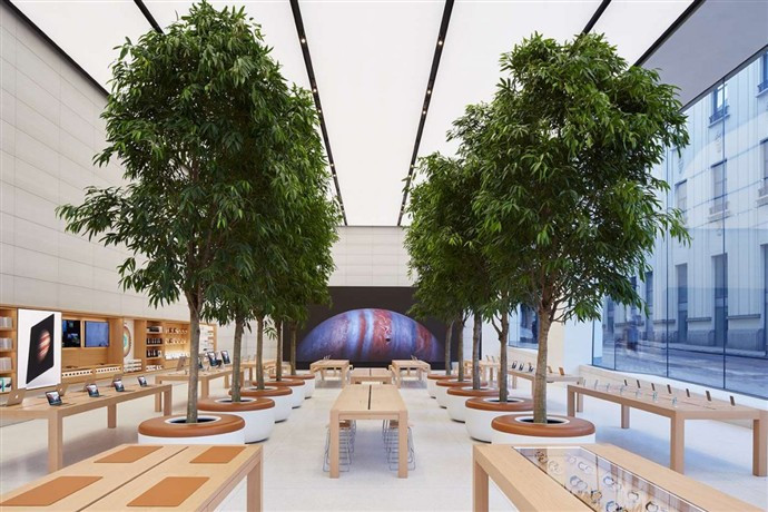 1446455134_there-are-eight-live-growing-trees-in-the-middle-from-the-apple-store-theyre-right-across-from-the-genius-bar.jpg