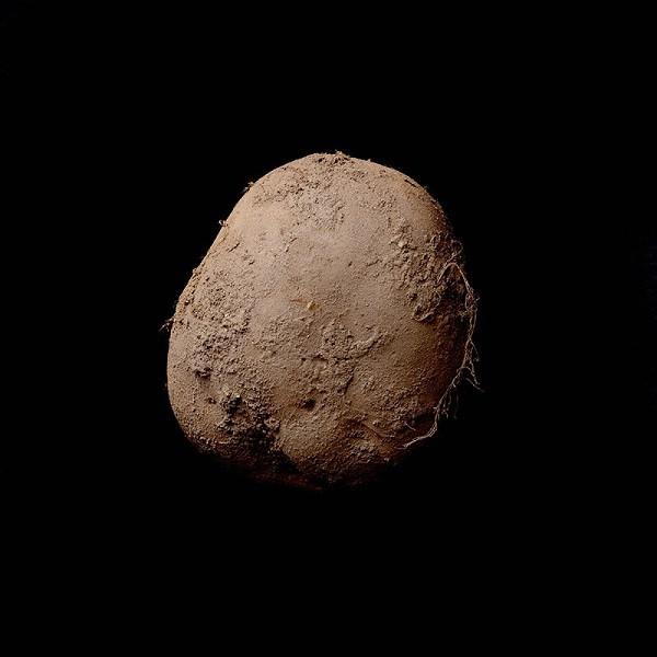 1453431408_kevin-abosch-potato.jpg