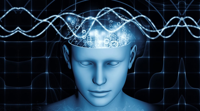 1470342873_l-theanine-increase-your-brain-waves-into-a-calm-relaxed-state.jpg