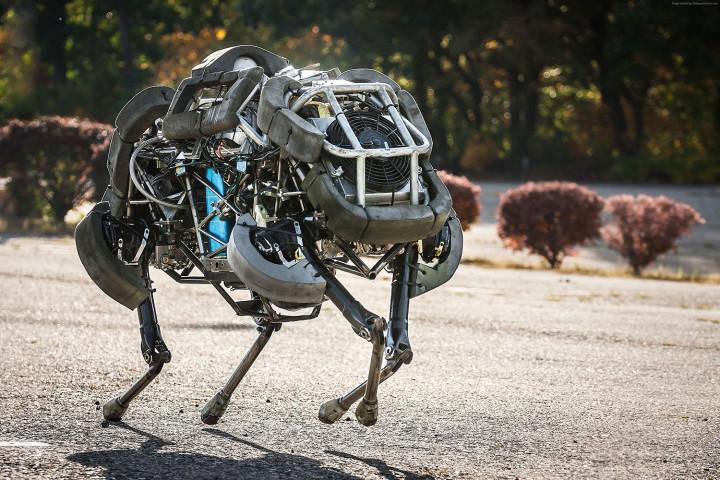 1472675349_boston-dynamics-wild-cat-3600x2400-best-robots-of-2015-robot-wild-cat-2778-1-720x480-c.jpg