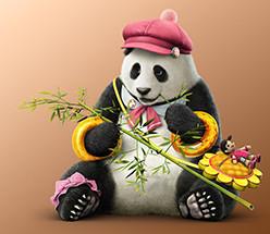 1481450867_panda1ptk7csfix1481294601.jpg