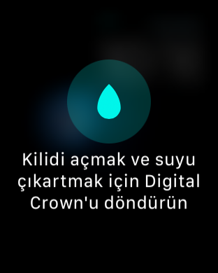 1481527089_img0736.png