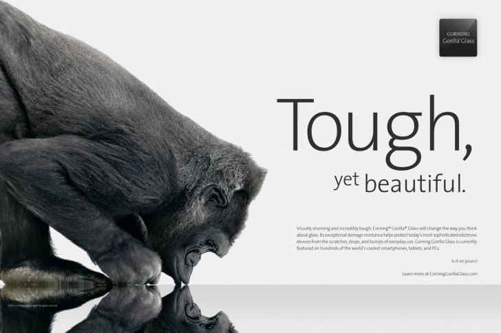 1494695227_gorilla.jpg