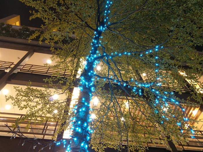 1495606337_htc-u11-night-camera-test-photos-18.jpg