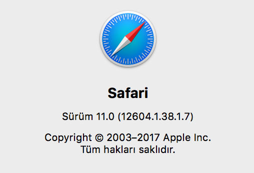 1505899743_safari-11.png