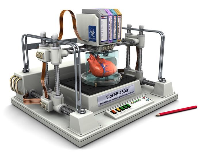 1511029120_3d-printer-that-can-bioprint-human-organs.jpg