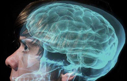 Beyninizin taklit edilmesini ister misiniz?