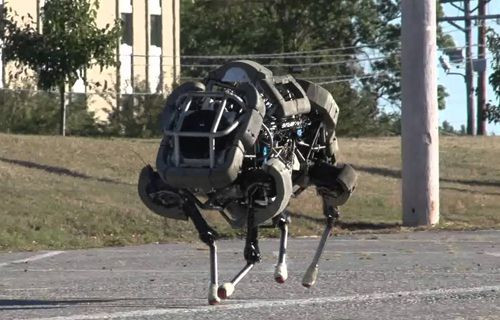 Bu robot çok hızlı koşabiliyor
