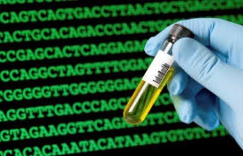 Dünyanın en eski İnsan DNA'sı bulundu!