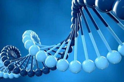İlk Türk İnsan Genomu yayını gerçekleştirildi