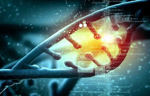 Yetişkin insandan ilk Kök Hücre, klonlandı!