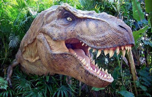 Dünyanın en büyük Dinozoru bakın nerede bulundu?