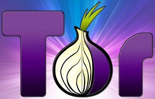 Polisten Tor operasyonu: 17 gözaltı