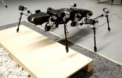 Bilimin yeni araştırmacısı: Böcek robot Hector [Video]