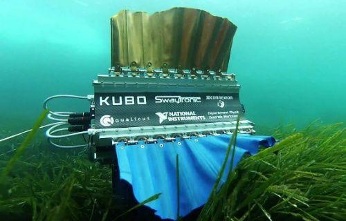 Mürekkep balığı tasarımlı yüzen robot [Video]