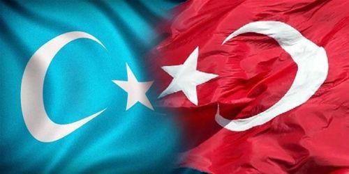 Türk Hackerlar Çin Halk Mahkemesi'ni hackledi