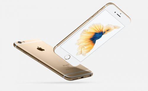 iPhone 6S'in başına gelenler pişmiş tavuğun başına gelmedi! (Video)