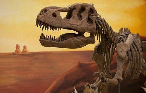 Dinozorların nesli çifte felaket sonucu yok olmuş olabilir