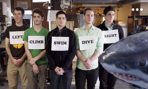 Düşünceyle köpek balığı kontrolü mümkün olabilir mi?