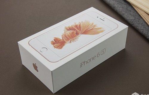 Satın aldığı iPhone 6s'in kutusundan bakın ne çıktı?