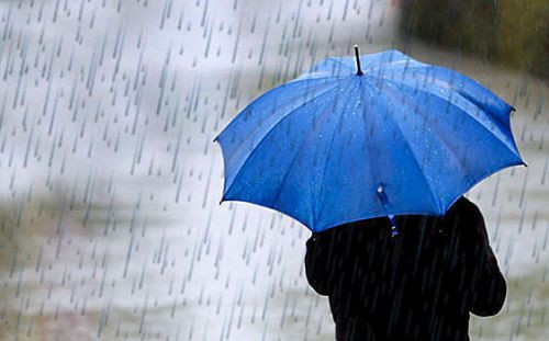 Dışarı çıkmadan önce hava durumunu Twitter'a danışın